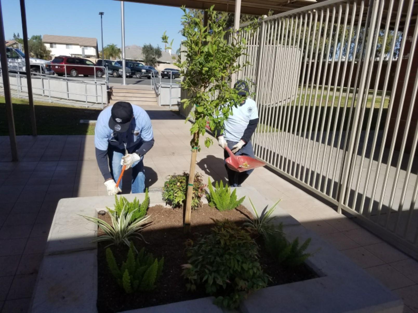 Men working in planter