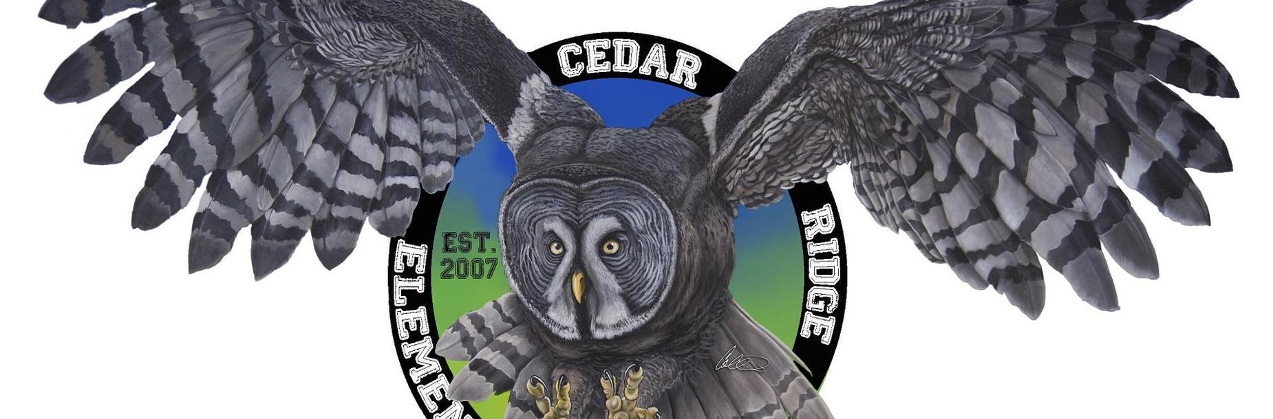 CRE Owl