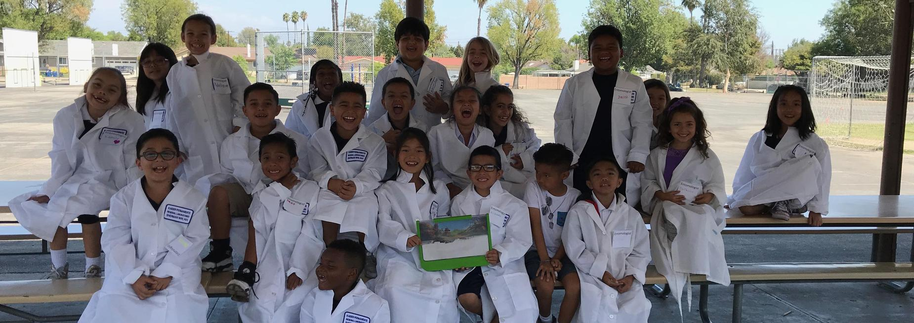 Second Grade Entomologists
