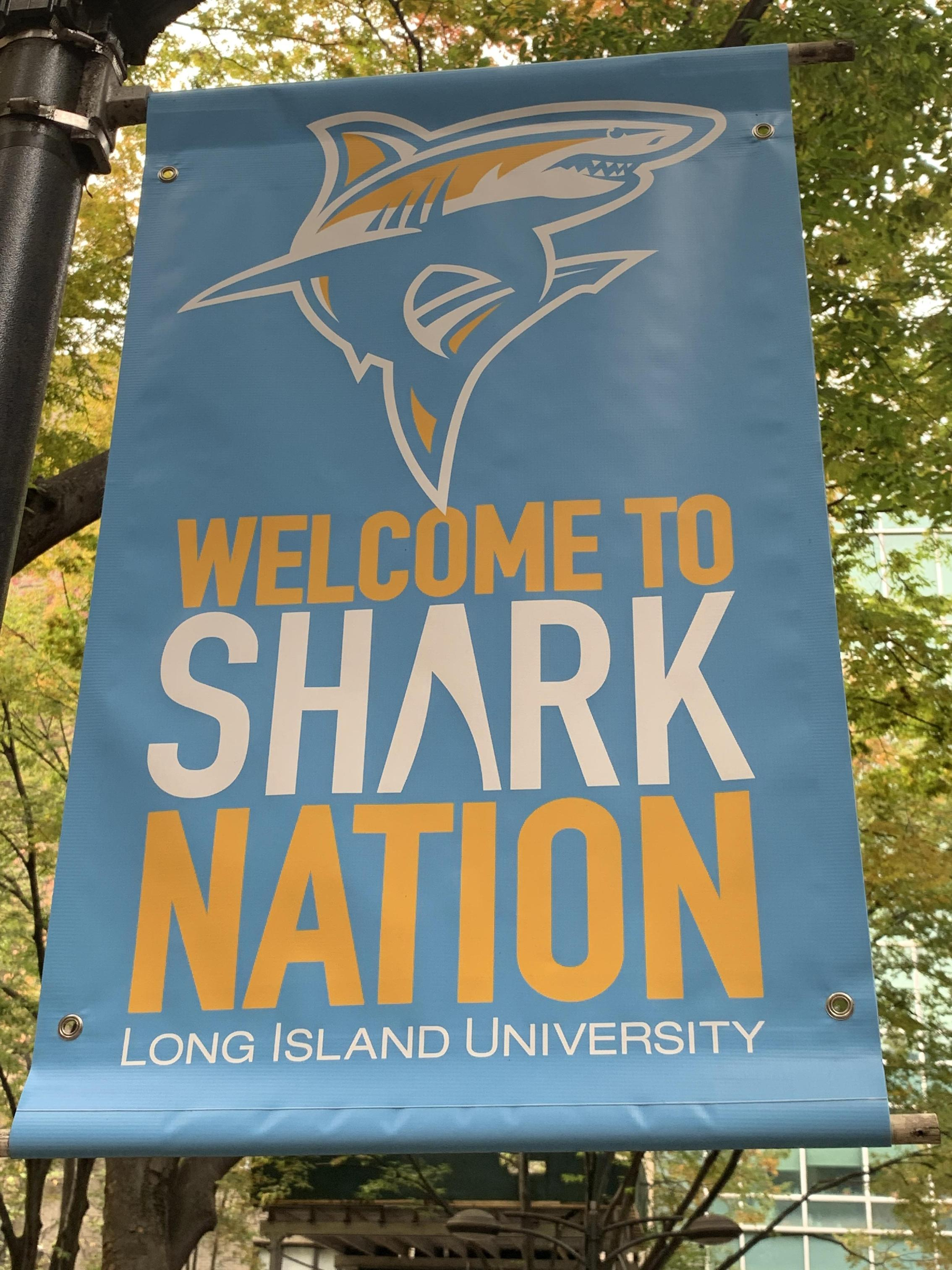 Welcome to Shark Nation LIU