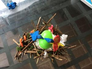 Felicity's nest with egg and birds.jpg