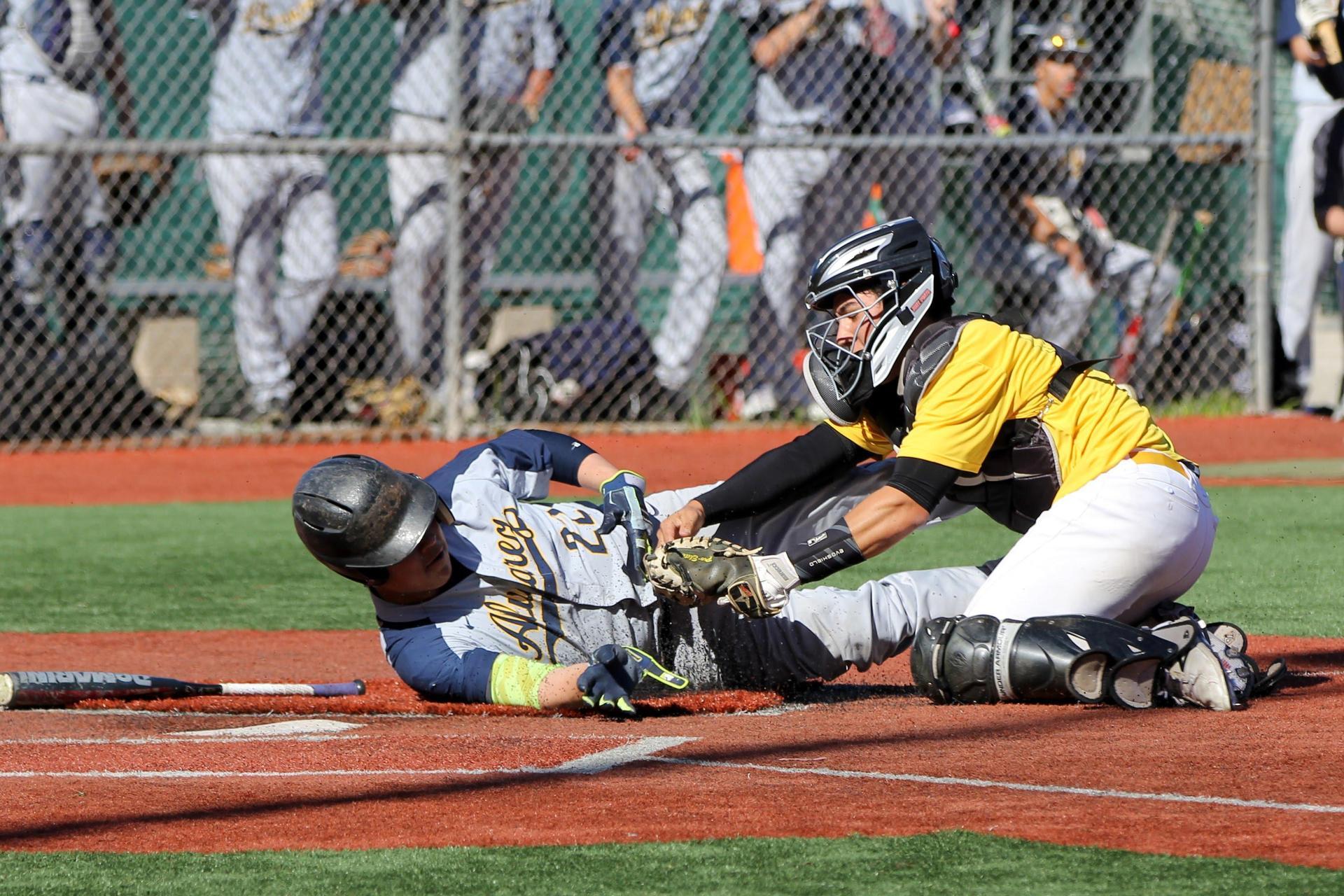 Baseball Photo 8