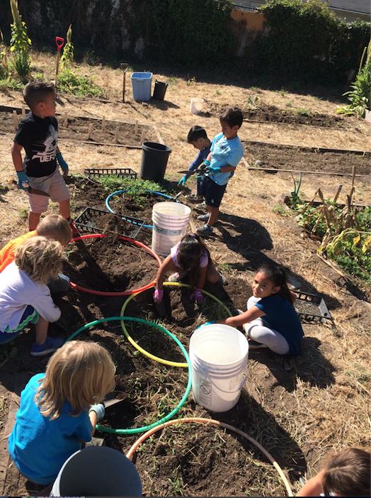 Digging in the garden
