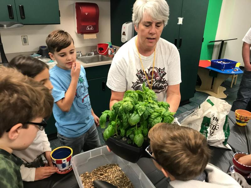 Basil Plants with kids & teacher