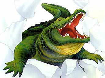 gator wall