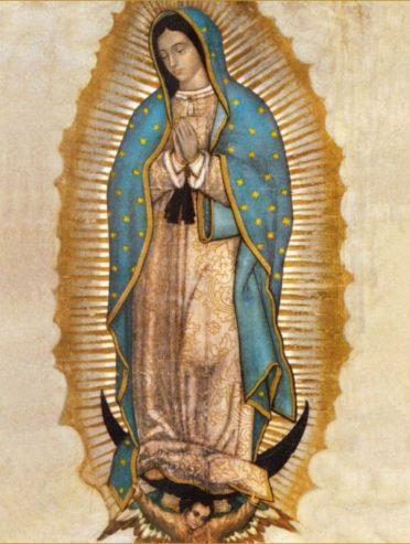 Our Lady of Guadalupe Novena/Celebration Schedule Thumbnail Image