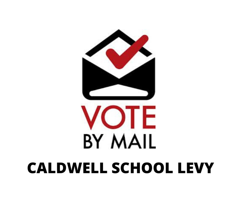 Image saying vote by mail