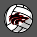 wolf volleyball