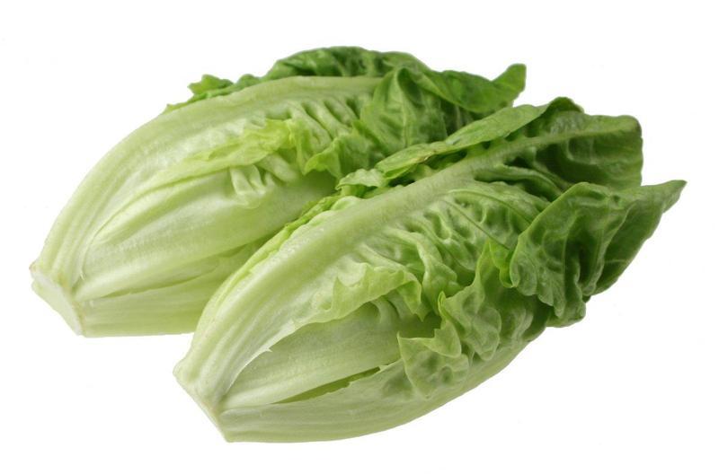 Romaine Lettuce Update Thumbnail Image