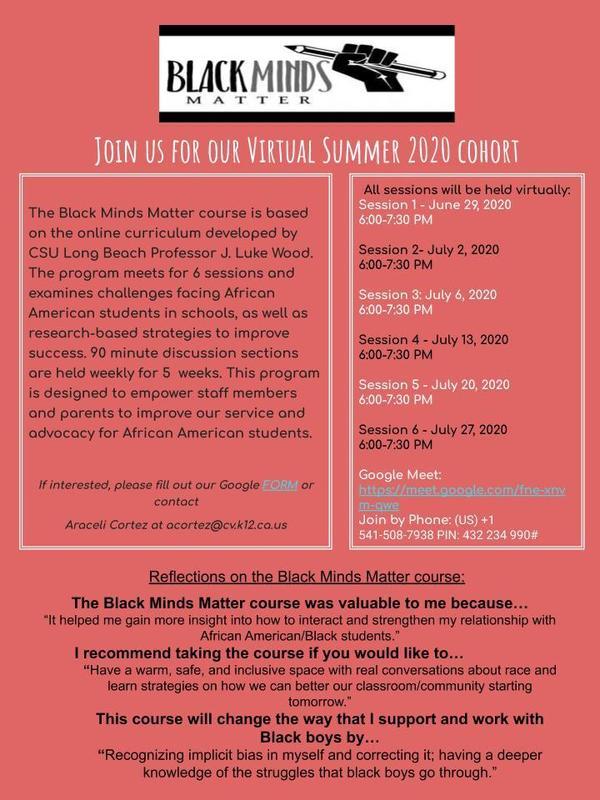 Black Minds Matter Summer Cohort
