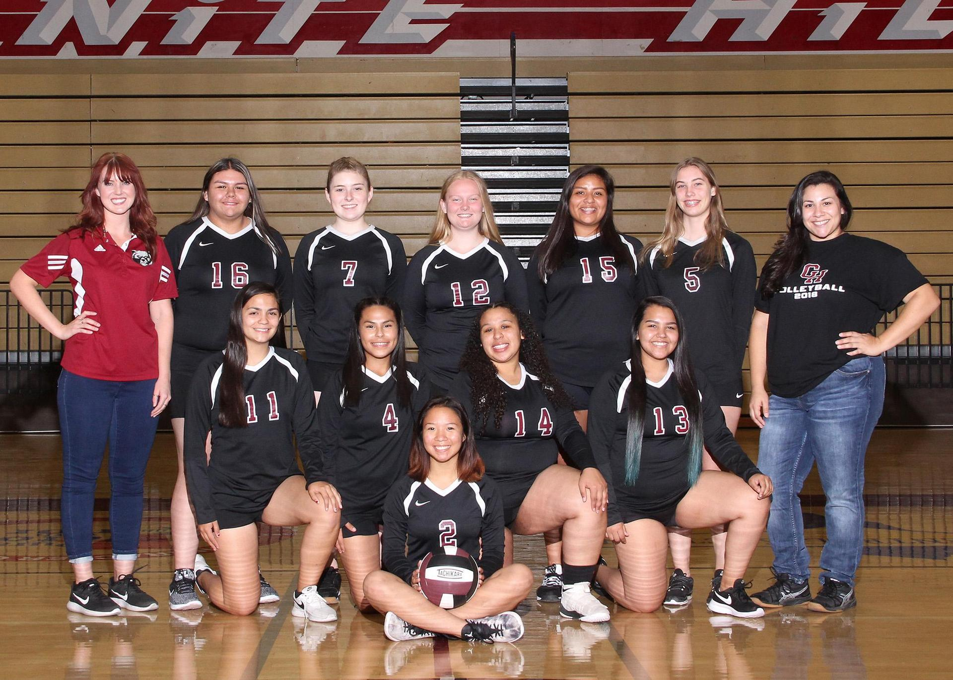 JV Grizzly Volleyball 2018