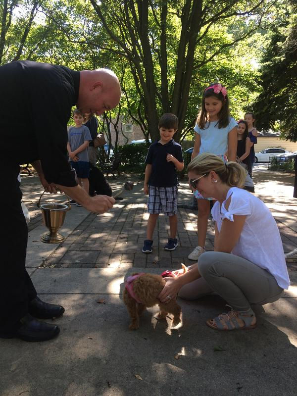 Blessing of the Pets Featured Photo