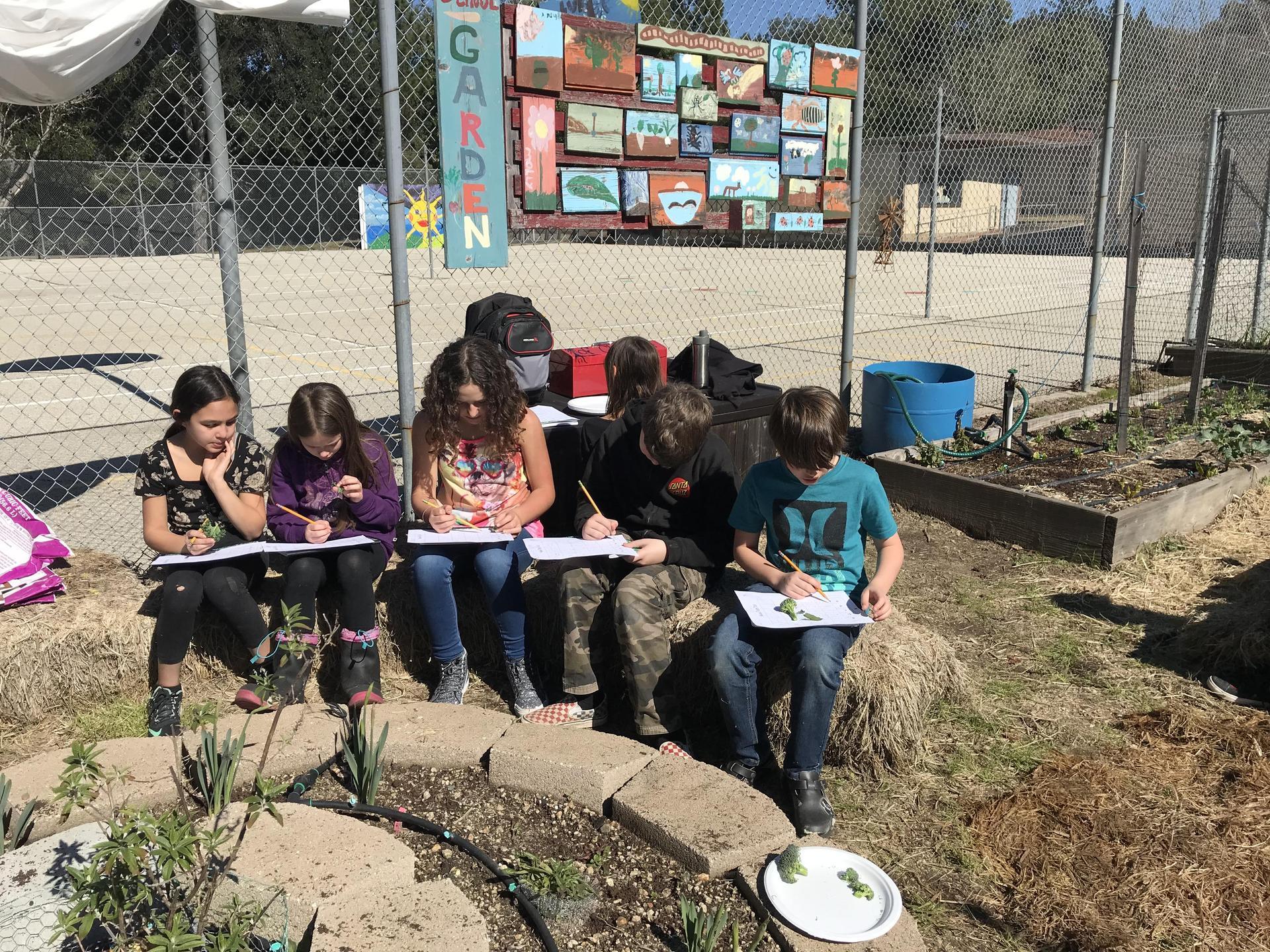 Jr. Master Gardeners Class