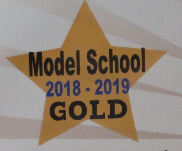 2018-2019 Gold Award