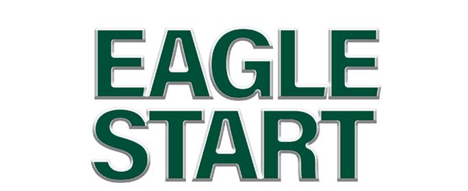 Eagle Start Guide