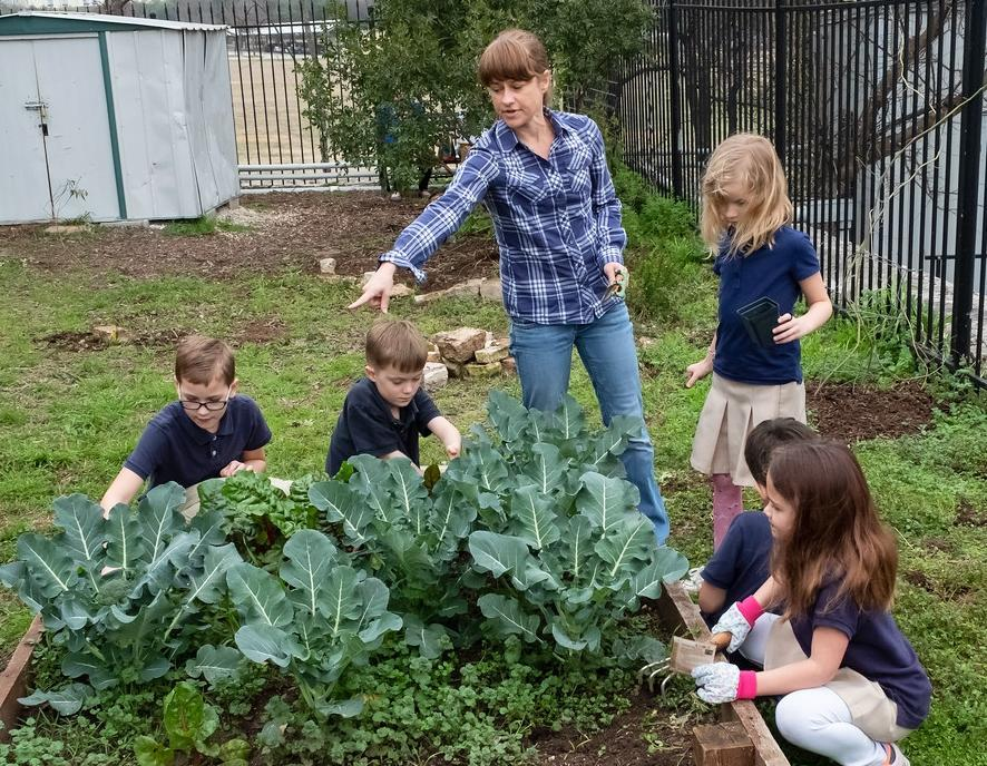 Photo of NYOS students working in garden
