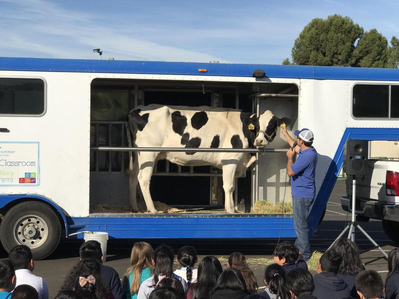 Mobile Dairy Classroom Visit Thumbnail Image