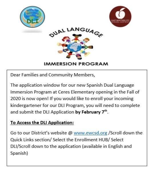 Steps for Accessing DLI Application.