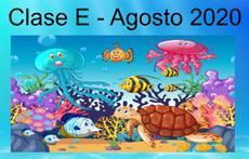 Class E Bajo el Mar