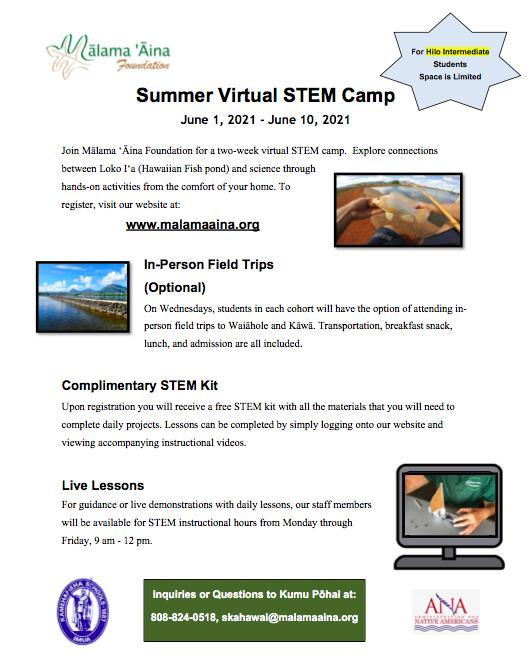 Summer Virtual STEM Camp Featured Photo
