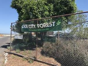 sign on fence stating our city forest