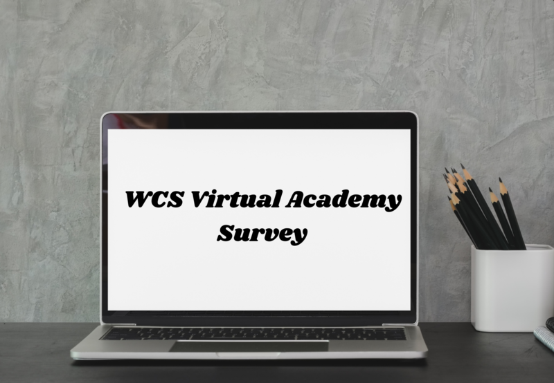 WCS Virtual Academy Survey