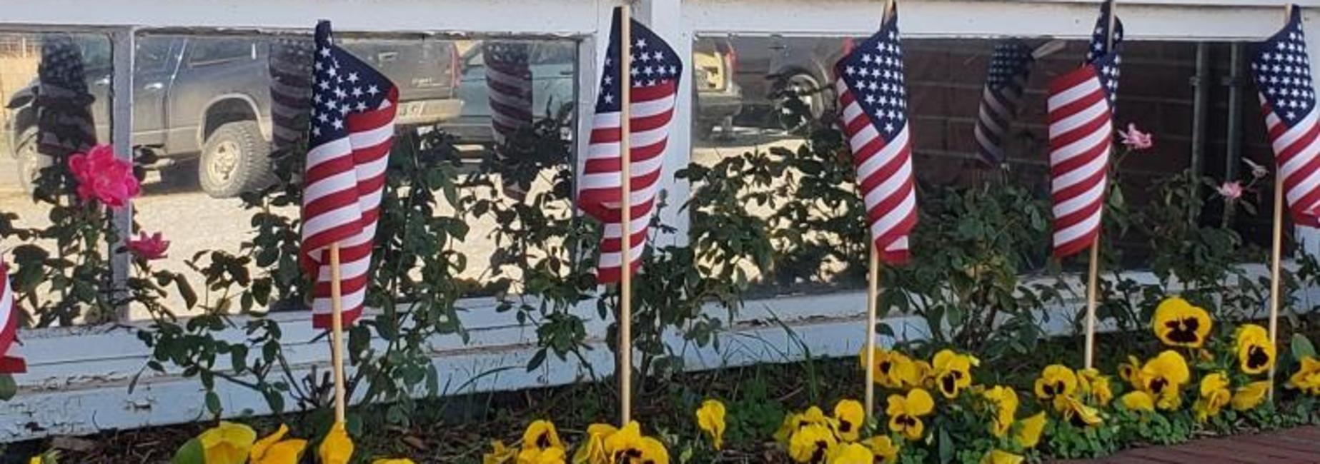 Veteran's Day Celebrations!