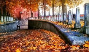 autumn-1013304_640.jpg