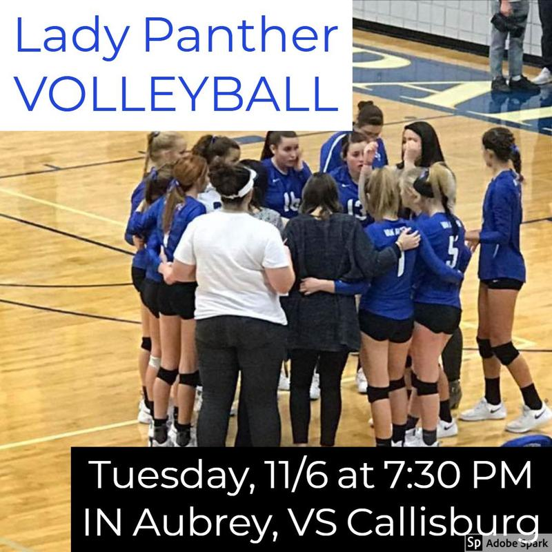 Lady Panther Volleyball Playoffs Thumbnail Image