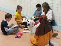 students reading to service dog
