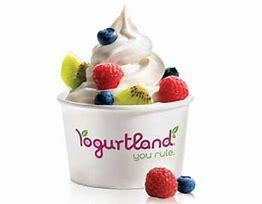 Yogurtland Fundraiser November 6th from 3 pm-9 pm Featured Photo