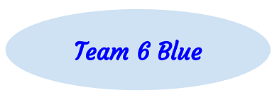 Team 6 Blue