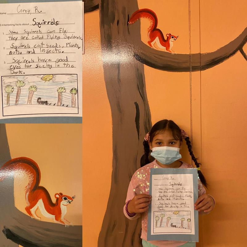 Grade 2 Animal Reports Featured Photo