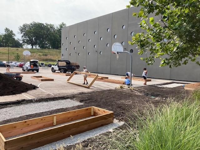 Community Garden Takes Root Featured Photo