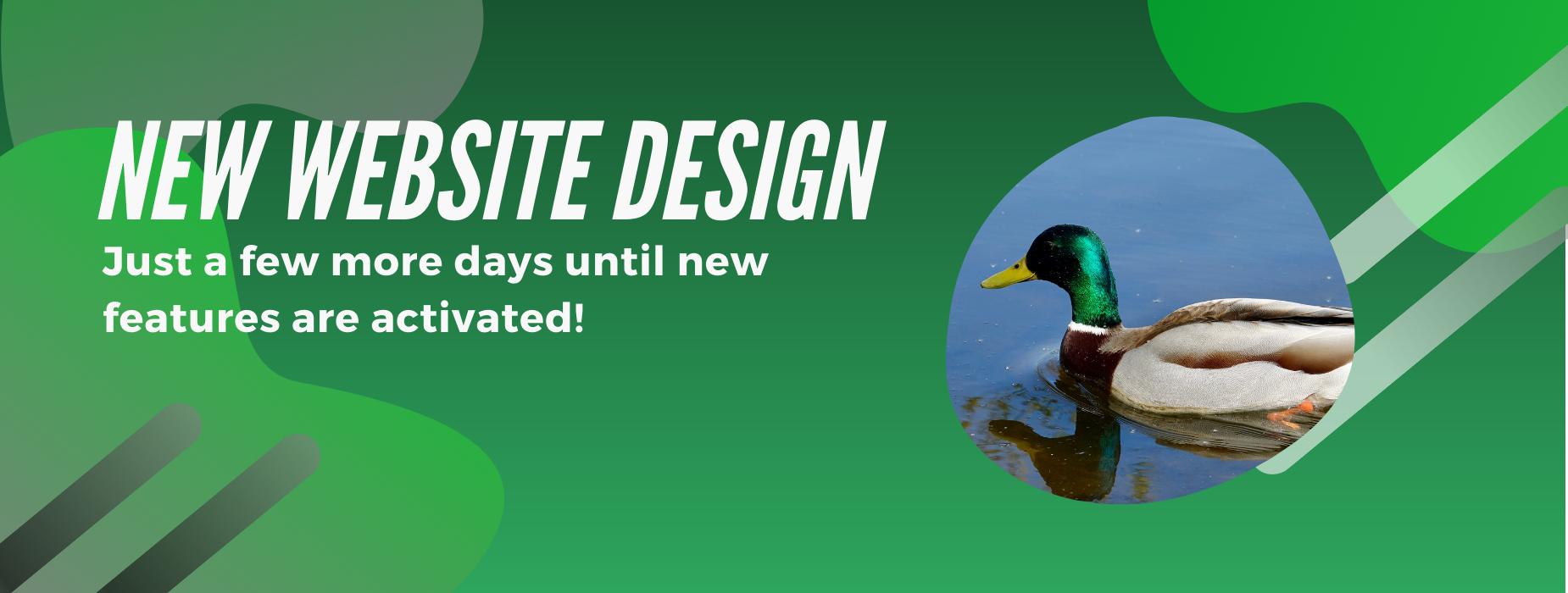 new website design banner