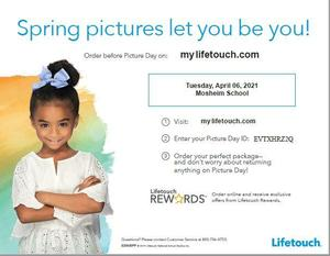 Spring Picture Information