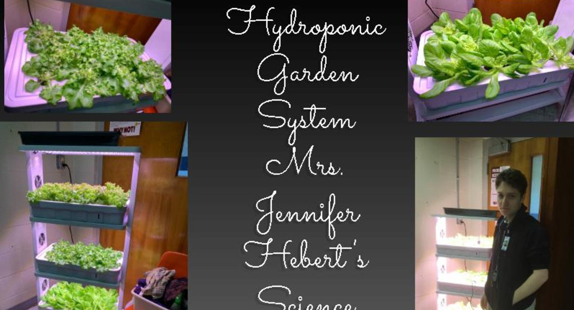 Mrs. Jennifer Hebert Hydroponic Gardeing System-Science Food Class