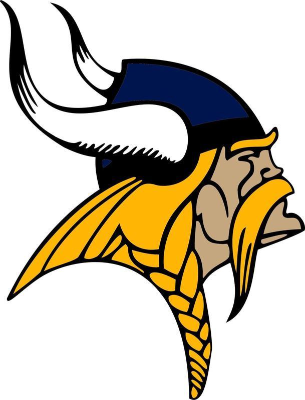 Viking Head Logo - GOOD.jpg