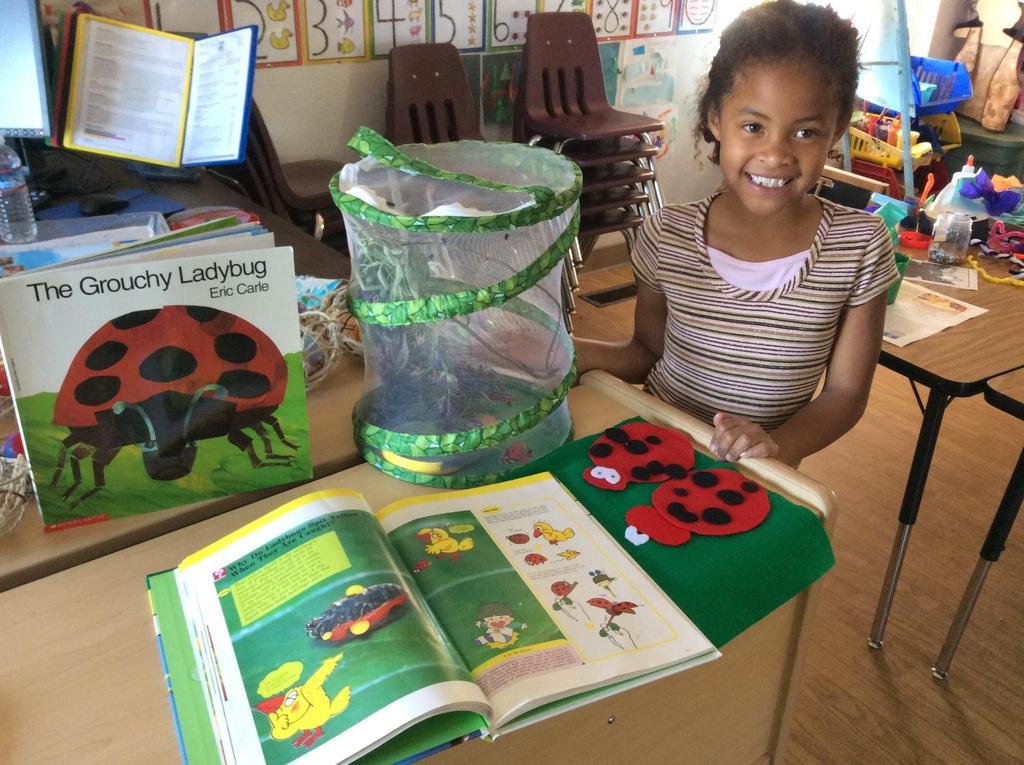 girl and a bug farm