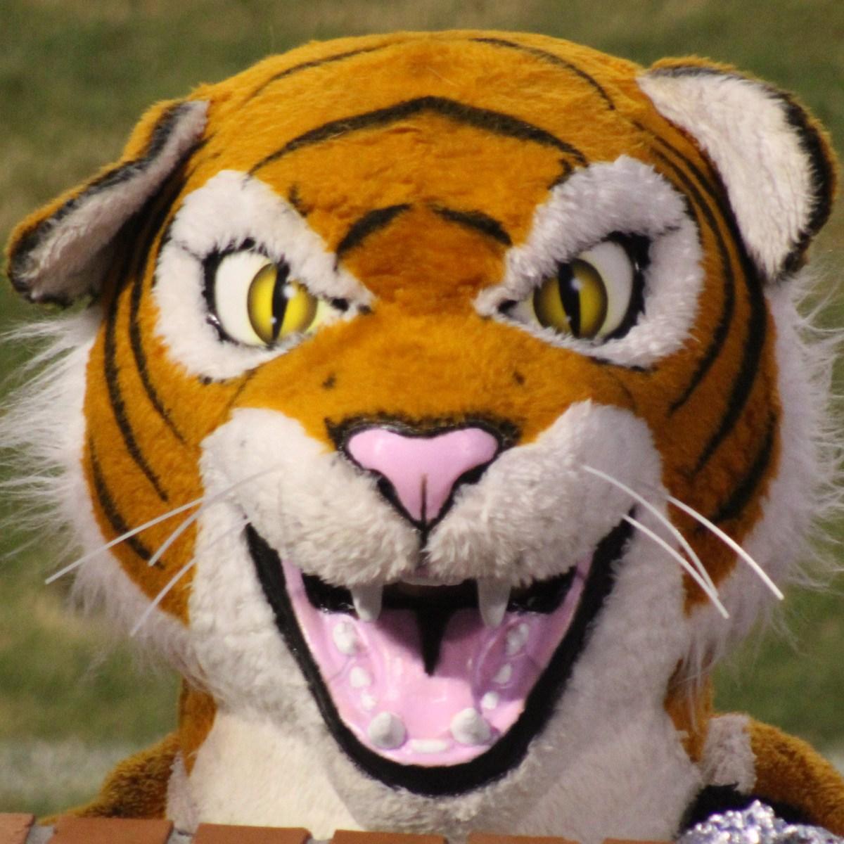 Danny Patterson's Profile Photo