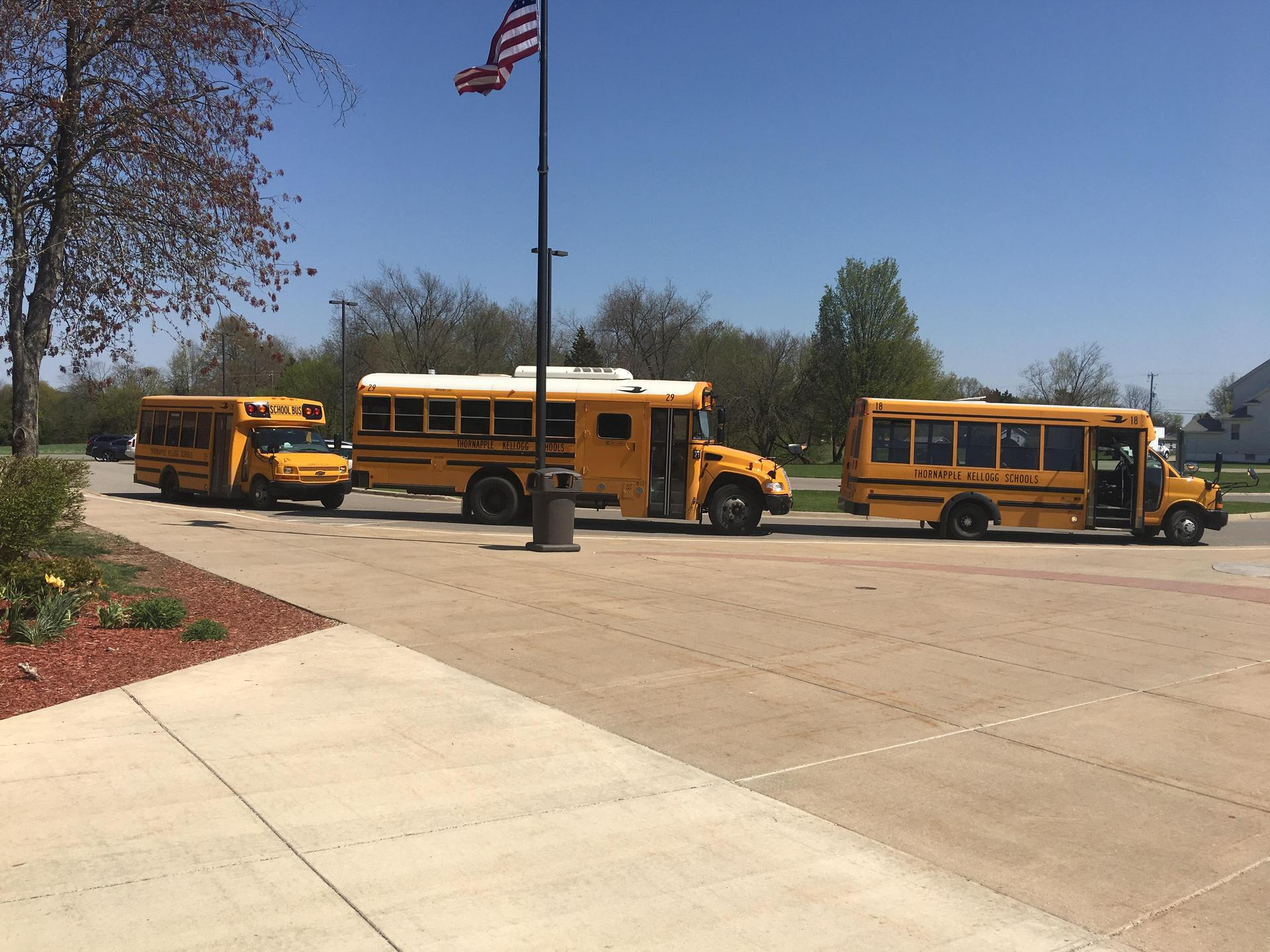 Buses lined up at Lee