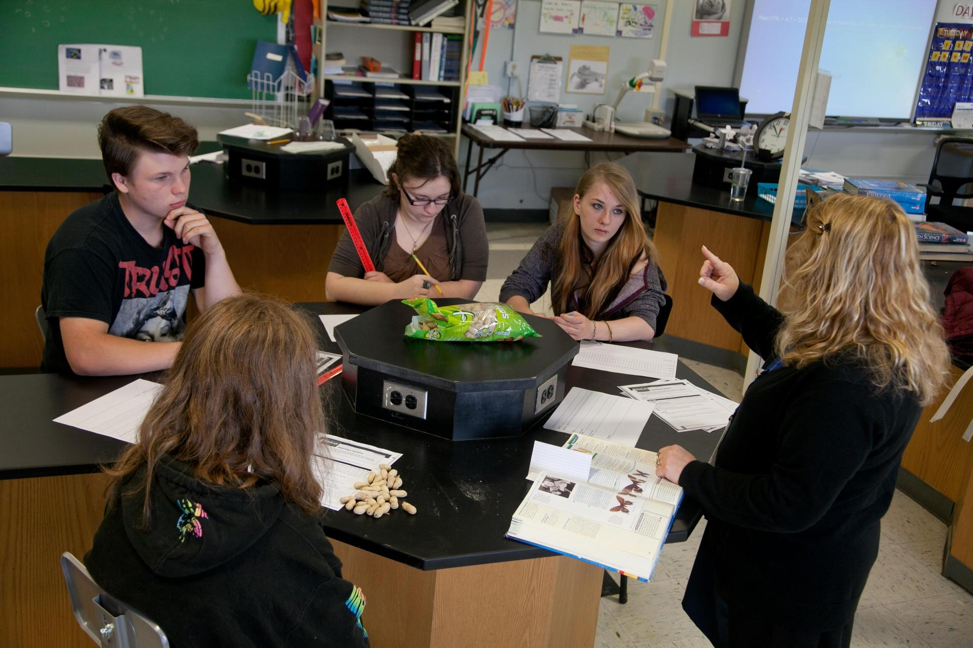 Teacher Providing Classroom Instruction