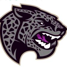 Jaguar Mascot