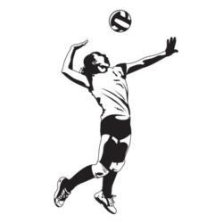 girl spiking the ball