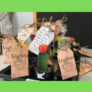 Image of a thank you gift to teachers - plants