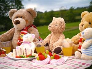 teddybearpicnic[1].jpg