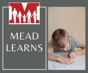 Mead Learns Logo
