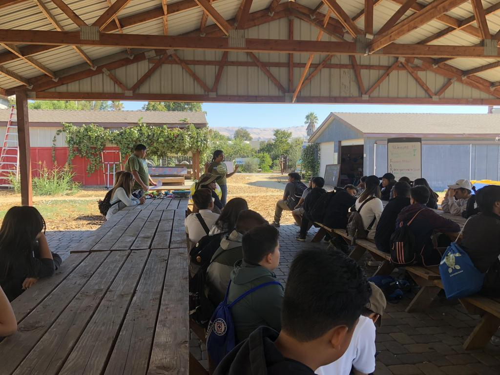 CCA students learn about sustainable agriculture at Veggielution, 2018.
