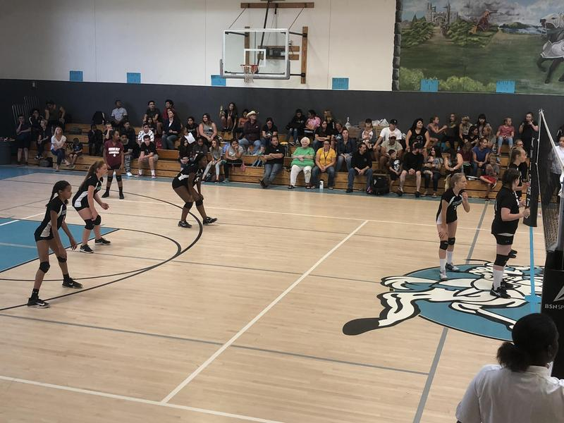 Dartmouth Knights vs Diamond Valley in Flag Football and Girls Volleyball