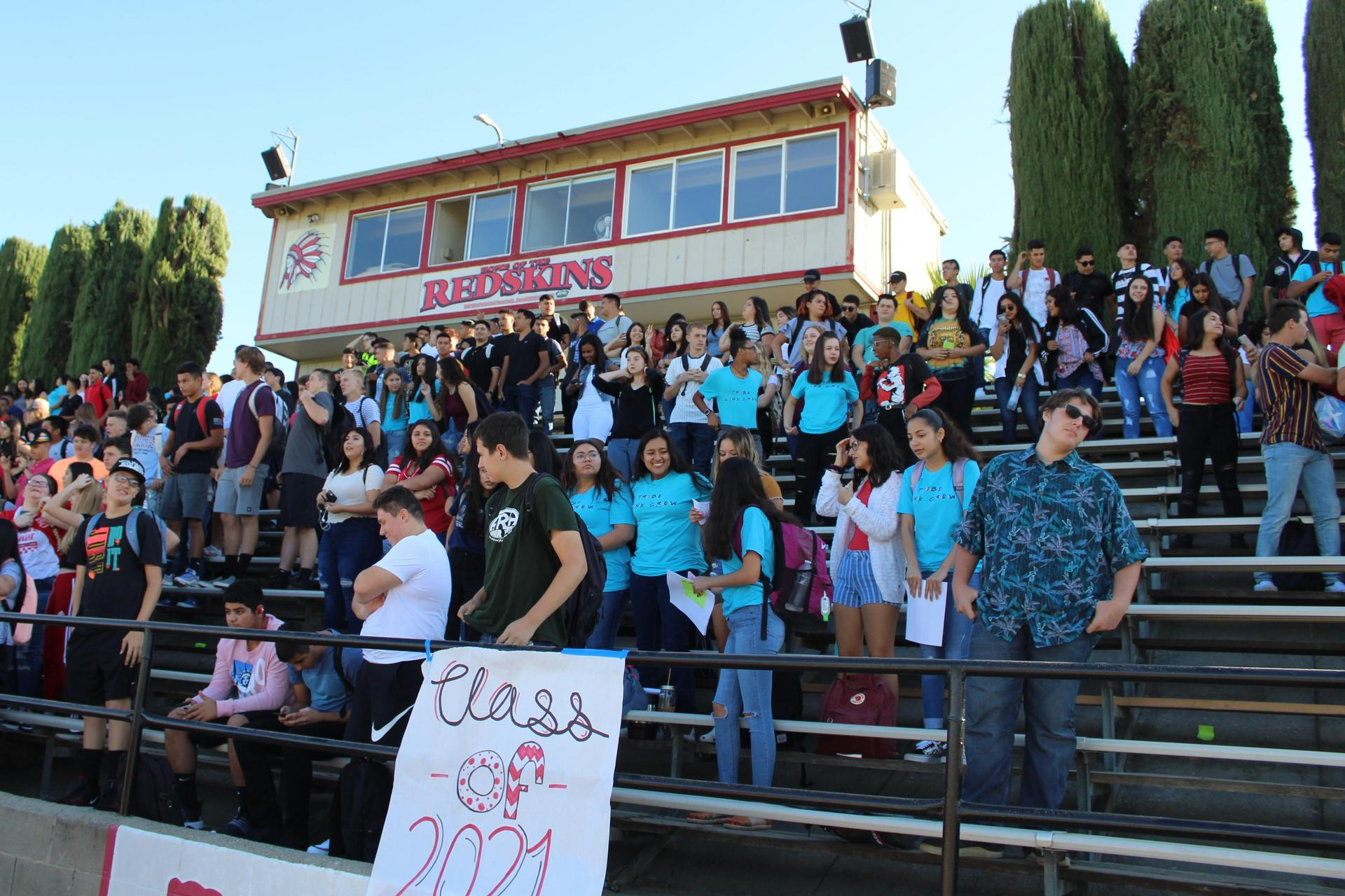cuhs students in the stands